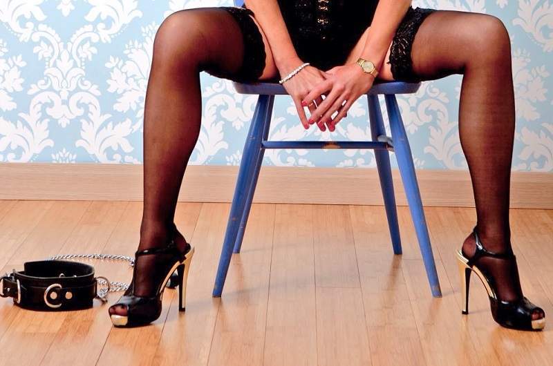 legs and collar web
