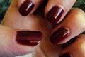 nails web